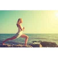 Program Wellness